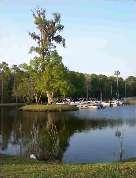 Colony Cove Marina, boat slips and dock area on river to Gulf Coast